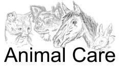 Hygiene & Tierhaltung